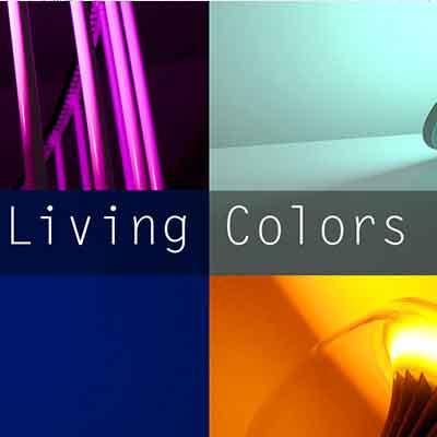 Projet Living Colors